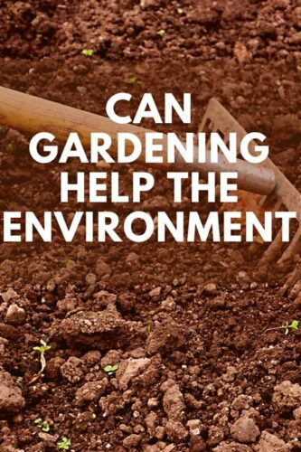 Can Gardening Help The Environment