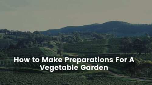 List of Ways to Make Preparations For A Vegetable Garden